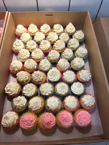 Mini vanilla cupcakes with cream cheese icing